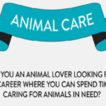 Your career in the animal care industry