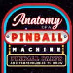 Anatomy of a Pinball Machine: Pinball Parts and Terminologies to Know