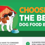 Choosing the Best Dog Food Bowl