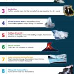 10 Things to Do in Iceland Before You Die