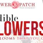 Edible Flowers: 15 Blooms that You Can Eat