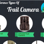 A Complete Guide to Trail Camera