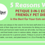 Why 2-in-1 Pet dish are safer for your Pets