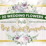 20 Wedding Flowers for the Best Bridal Bouquets
