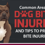 Common Areas for Dog Bites Injuries and Tips to Prevent a Bite