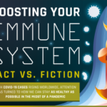What Works For Boosting Immune Systems – Infographic