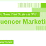 Infographic on Influencer Marketing
